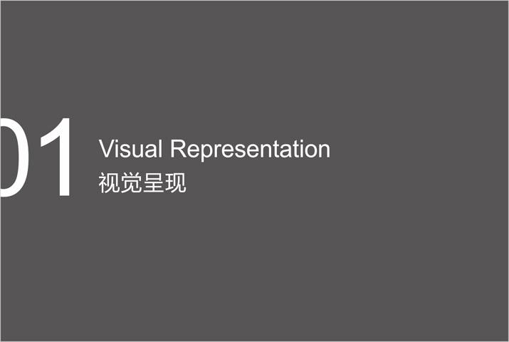 公司品牌形象设计视觉呈现